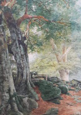 La Forêt de Fontainebleau et ses villages